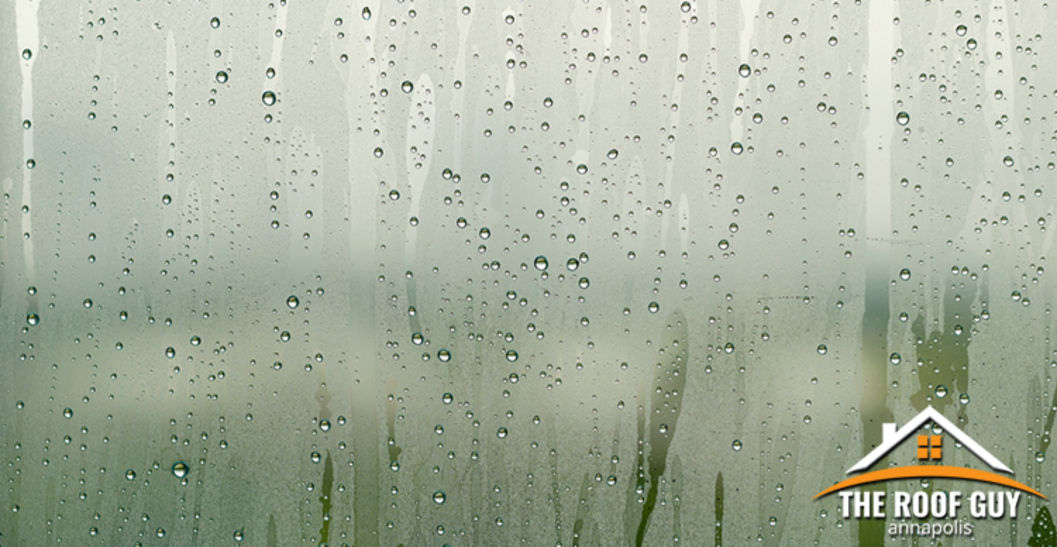 Condensation or Leaky Roof? How to Tell the Difference