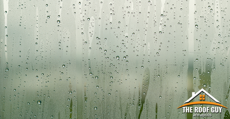 Condensation Featured Image
